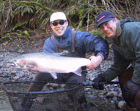 Cowichan River Steelhead - Hatchery Keeper!